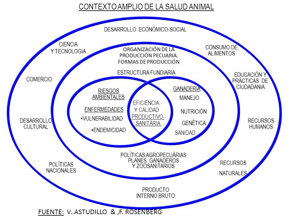 CONTEXTO AMPLIO DE LA SALUD ANIMAL