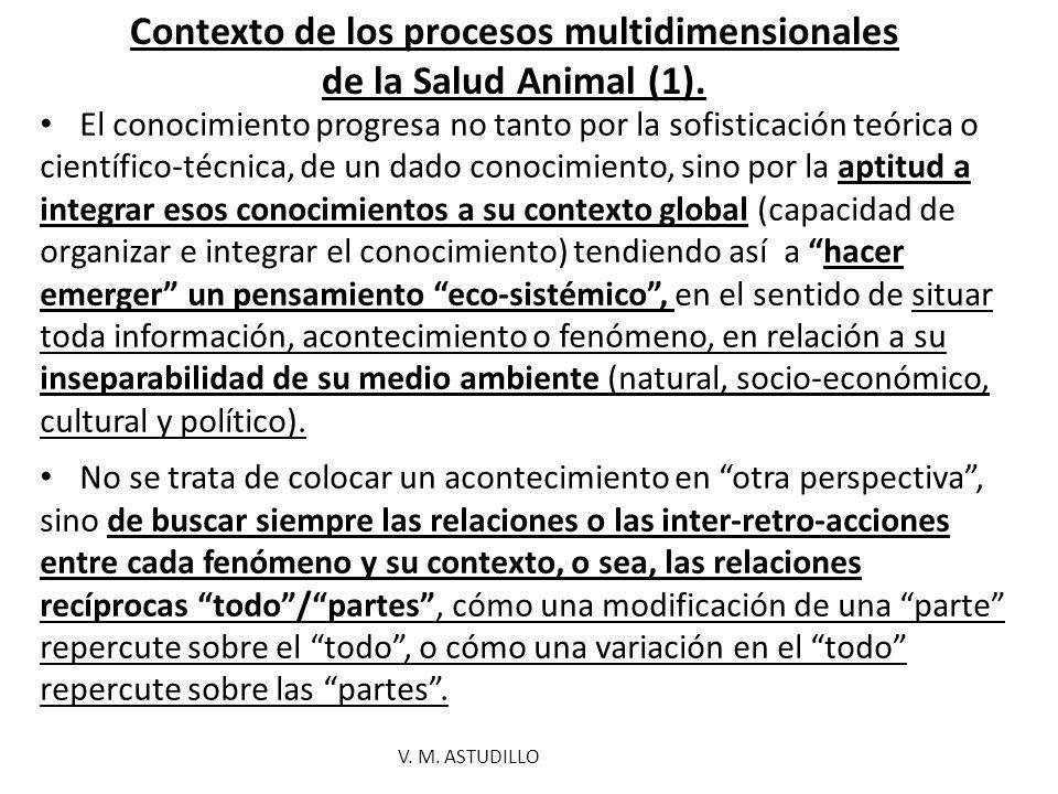 Contexto de los procesos multidimensionales de la Salud Animal (1).