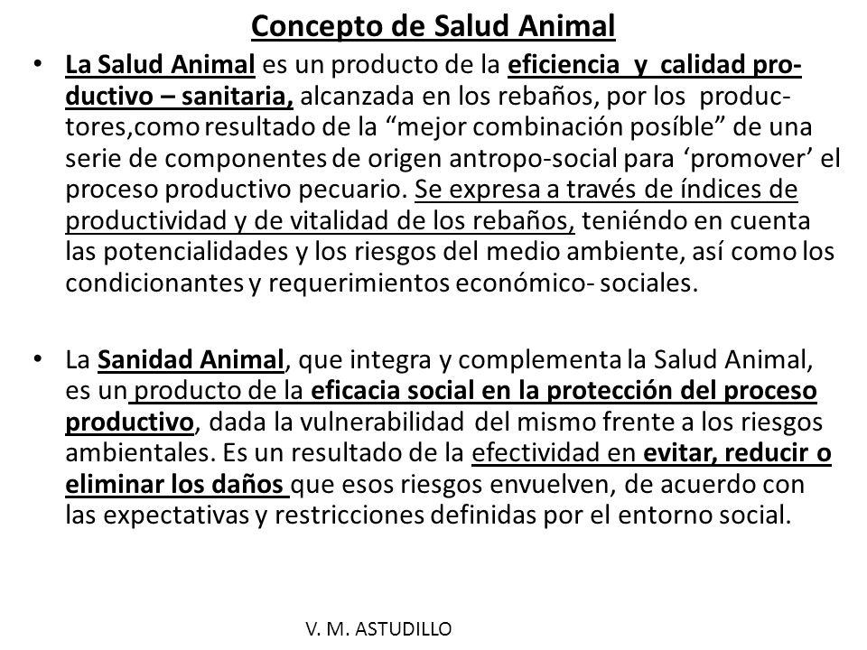 Concepto de Salud Animal
