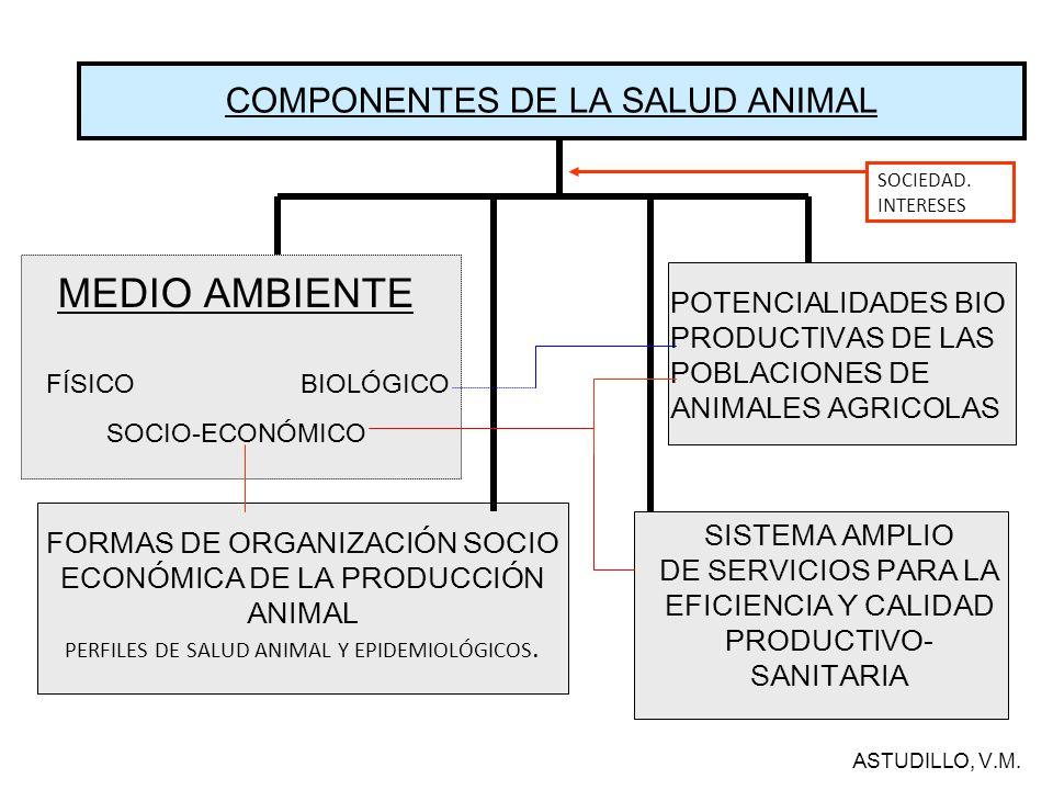 MEDIO AMBIENTE COMPONENTES DE LA SALUD ANIMAL