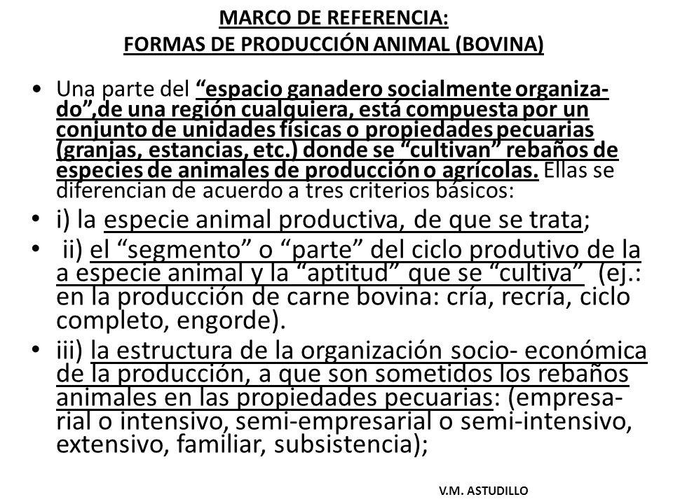 MARCO DE REFERENCIA: FORMAS DE PRODUCCIÓN ANIMAL (BOVINA)