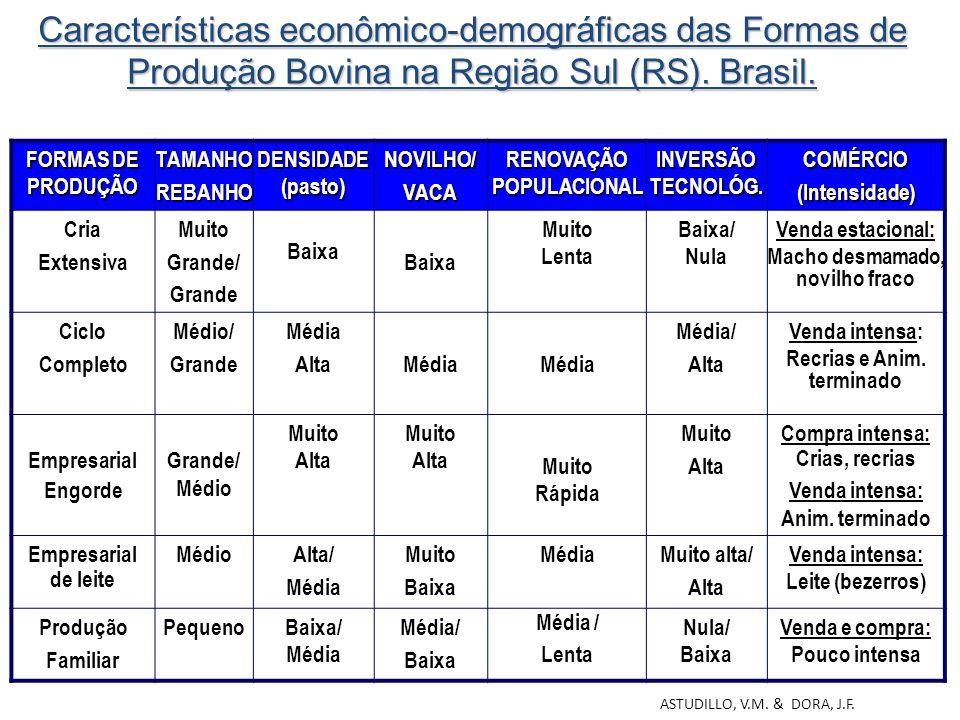 Características econômico-demográficas das Formas de Produção Bovina na Região Sul (RS). Brasil.