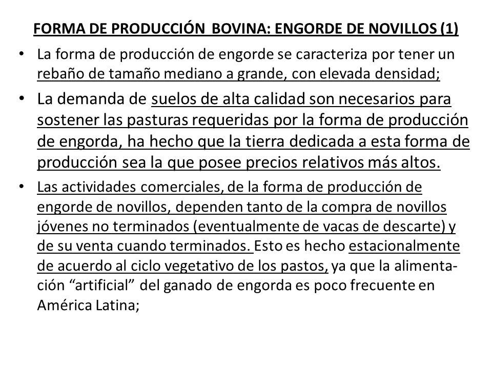 FORMA DE PRODUCCIÓN BOVINA: ENGORDE DE NOVILLOS (1)