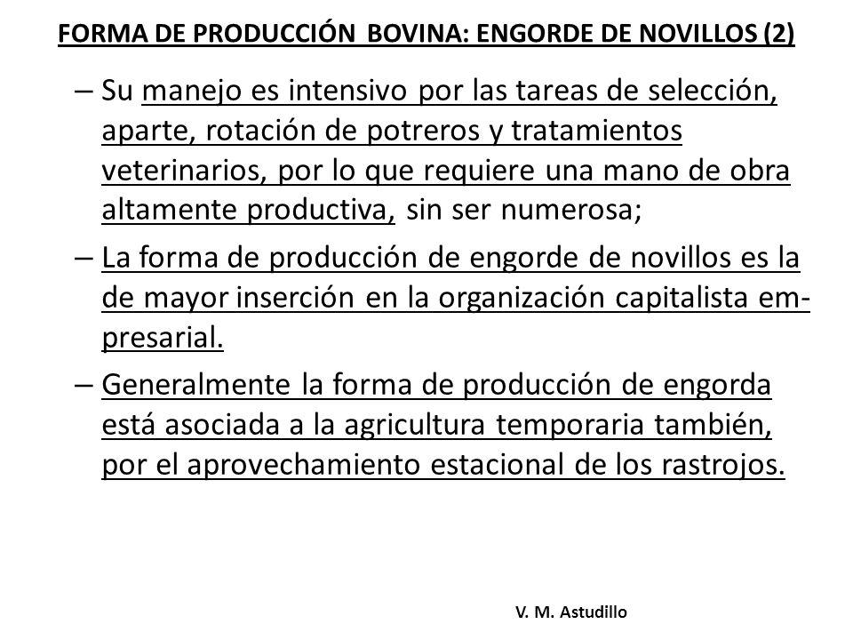 FORMA DE PRODUCCIÓN BOVINA: ENGORDE DE NOVILLOS (2)