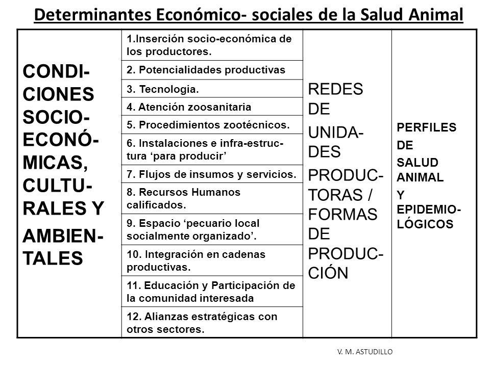 Determinantes Económico- sociales de la Salud Animal