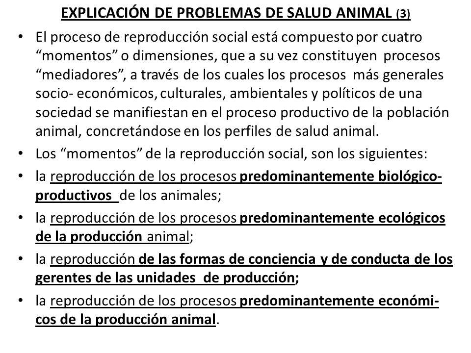 EXPLICACIÓN DE PROBLEMAS DE SALUD ANIMAL (3)