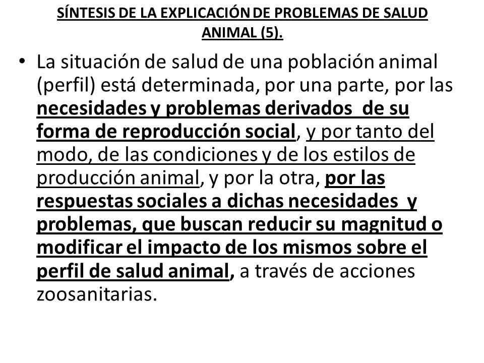 SÍNTESIS DE LA EXPLICACIÓN DE PROBLEMAS DE SALUD ANIMAL (5).