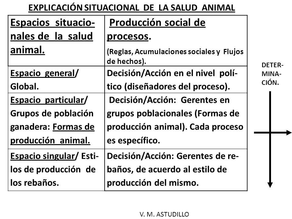 Espacios situacio- nales de la salud animal.