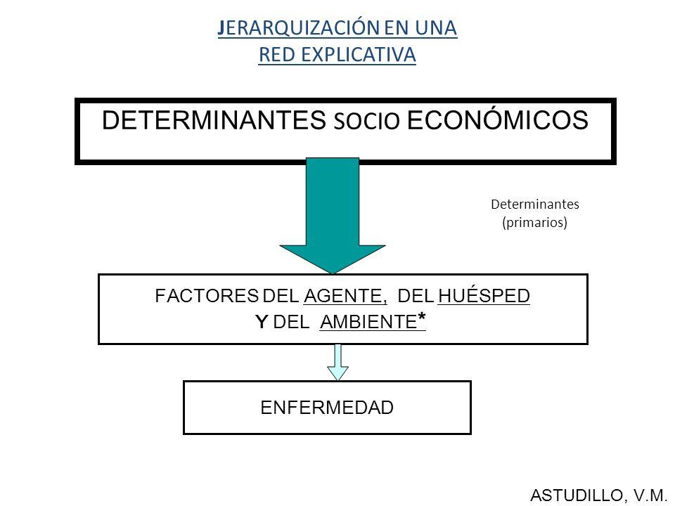 DETERMINANTES SOCIO ECONÓMICOS