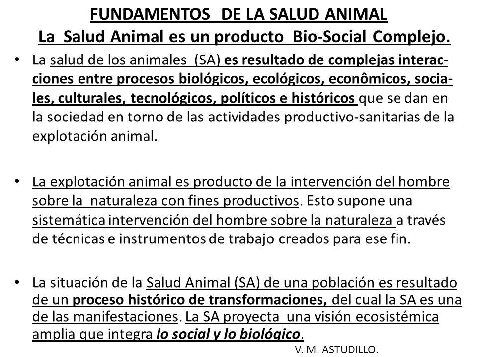 FUNDAMENTOS DE LA SALUD ANIMAL