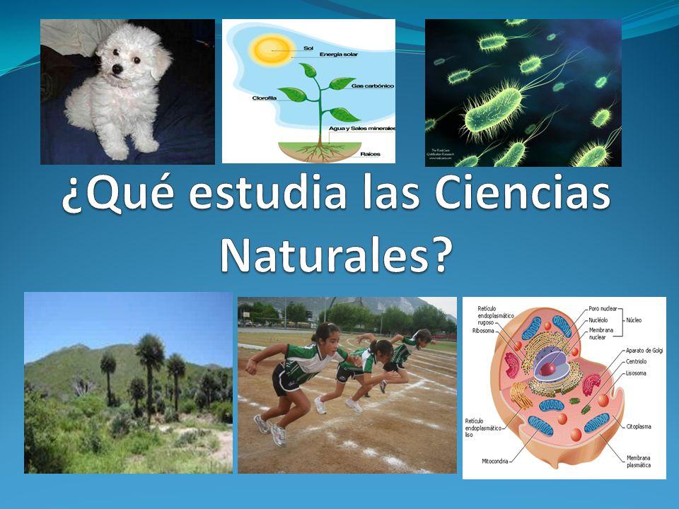 ¿Qué estudia las Ciencias Naturales