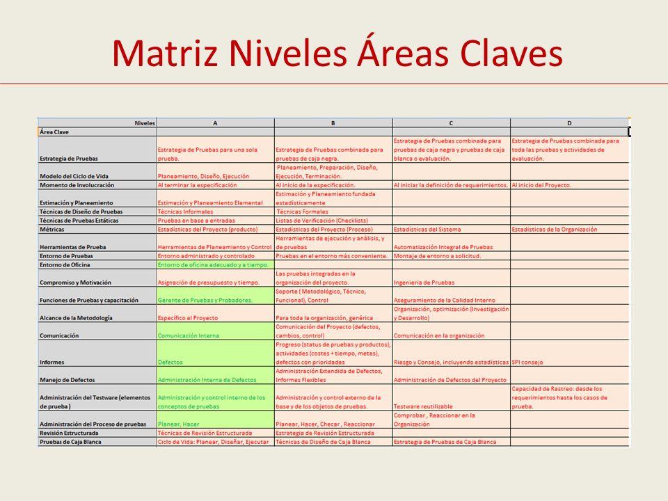 Matriz Niveles Áreas Claves