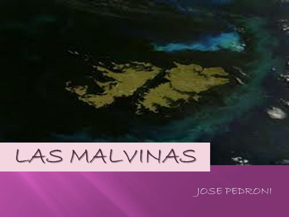LAS MALVINAS JOSE PEDRONI