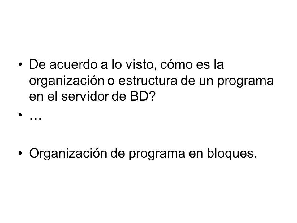 De acuerdo a lo visto, cómo es la organización o estructura de un programa en el servidor de BD
