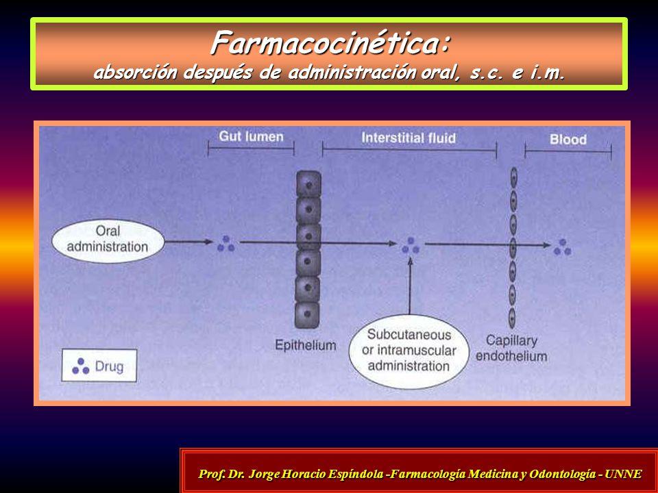 Farmacocinética: absorción después de administración oral, s.c. e i.m.