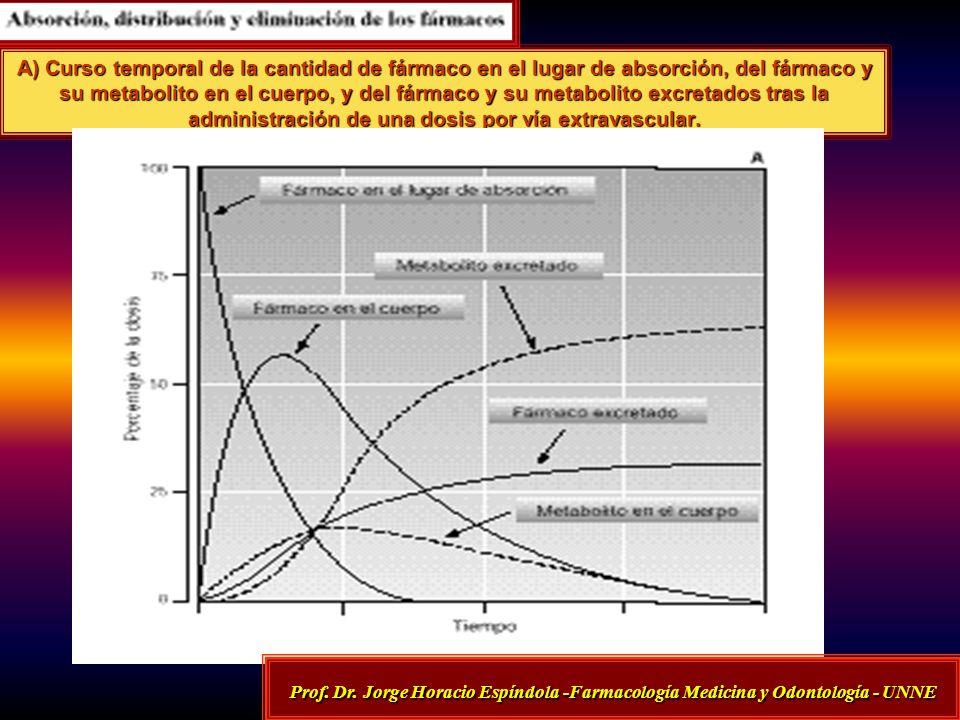 A) Curso temporal de la cantidad de fármaco en el lugar de absorción, del fármaco y su metabolito en el cuerpo, y del fármaco y su metabolito excretados tras la administración de una dosis por vía extravascular.