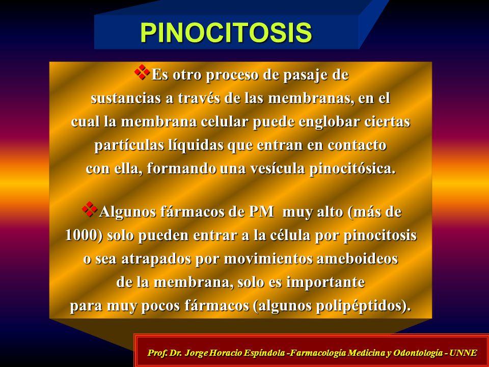 PINOCITOSIS Es otro proceso de pasaje de