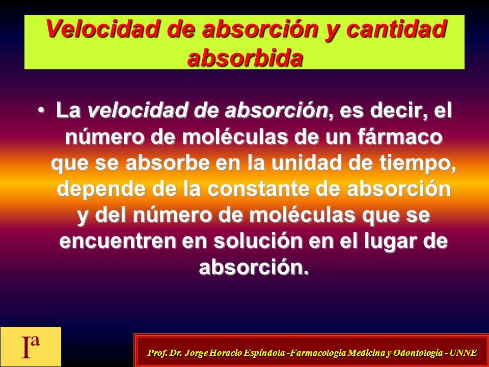 Velocidad de absorción y cantidad absorbida