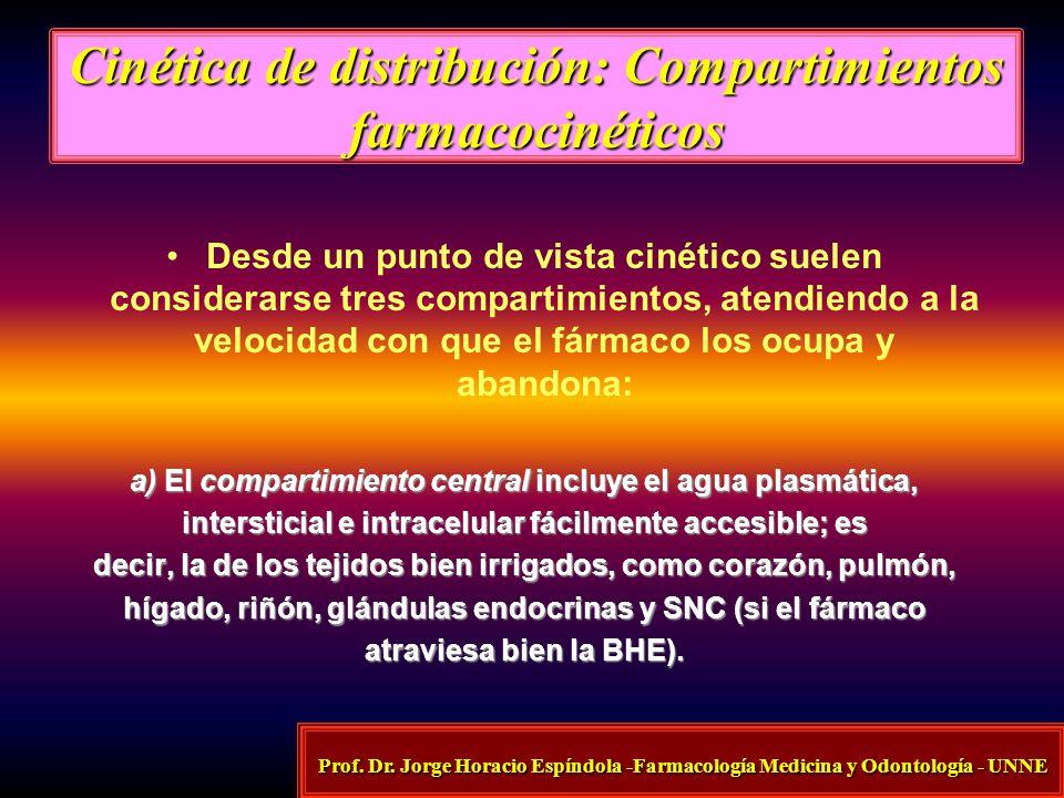 Cinética de distribución: Compartimientos farmacocinéticos
