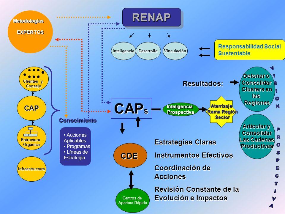 VISION PROSPECTIVA CAPs RENAP CDE Resultados: CAP Estrategias Claras
