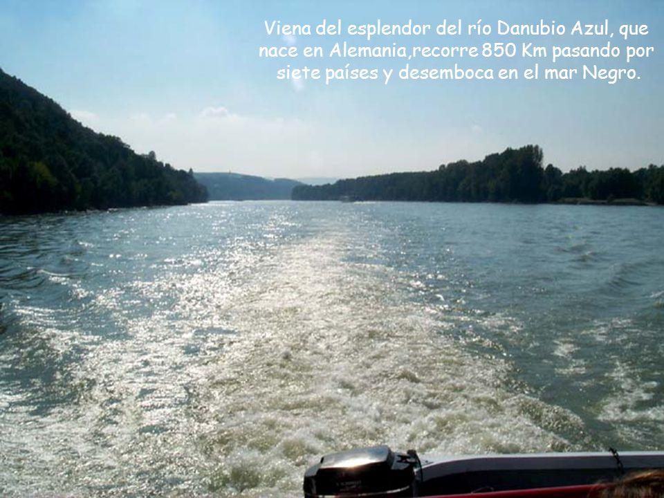 Viena del esplendor del río Danubio Azul, que
