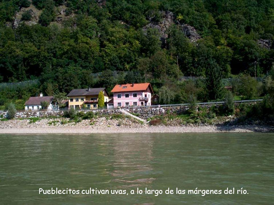 Pueblecitos cultivan uvas, a lo largo de las márgenes del río.