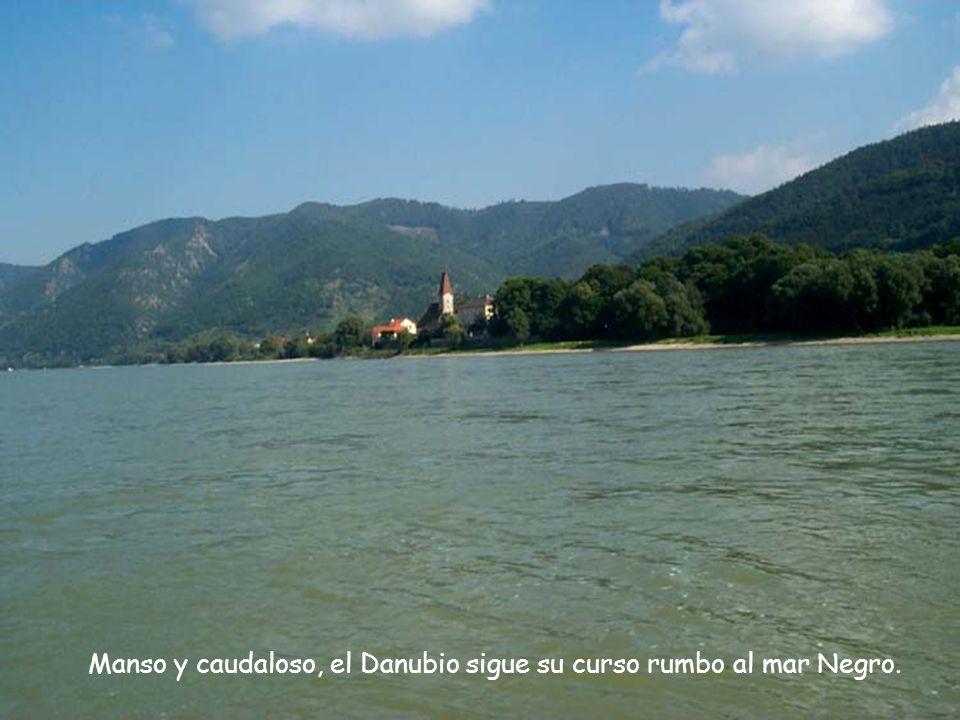 Manso y caudaloso, el Danubio sigue su curso rumbo al mar Negro.
