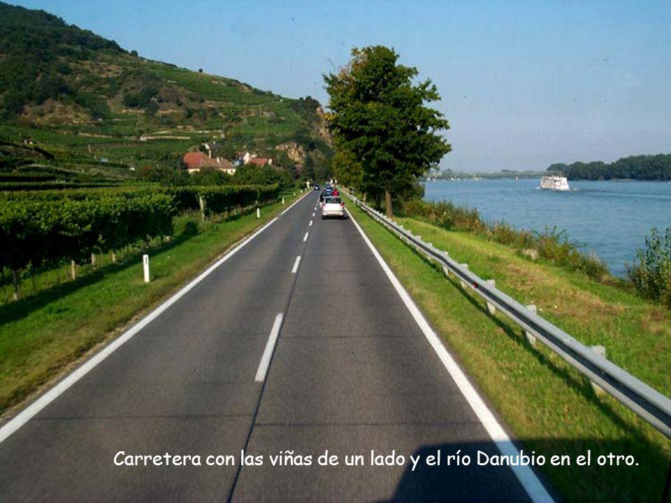 Carretera con las viñas de un lado y el río Danubio en el otro.