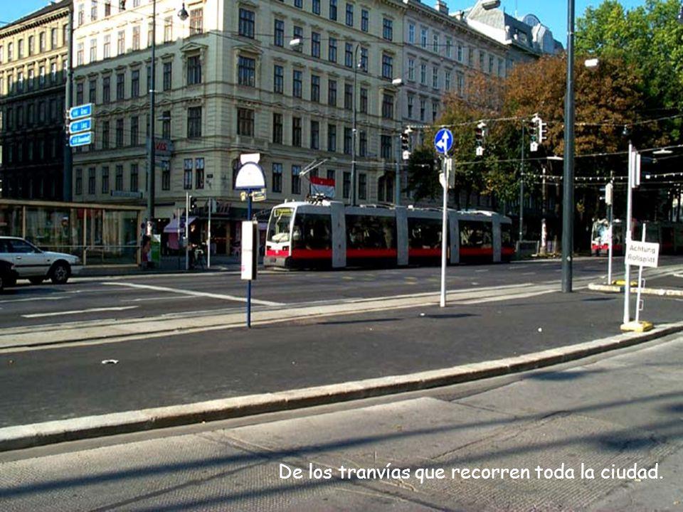 De los tranvías que recorren toda la ciudad.