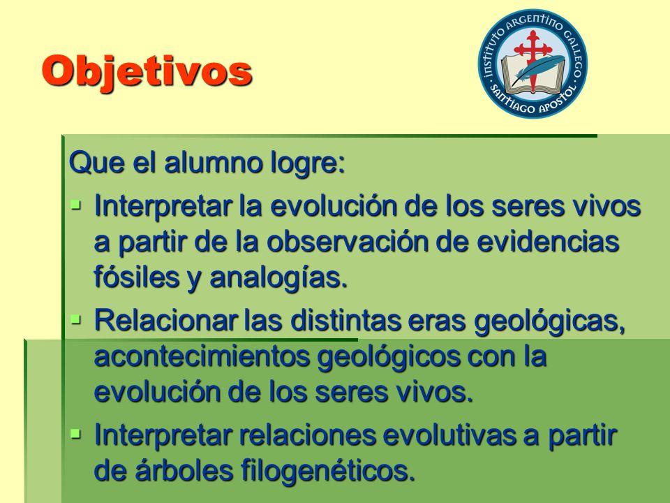 Objetivos Que el alumno logre: