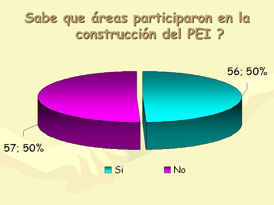 Sabe que áreas participaron en la construcción del PEI