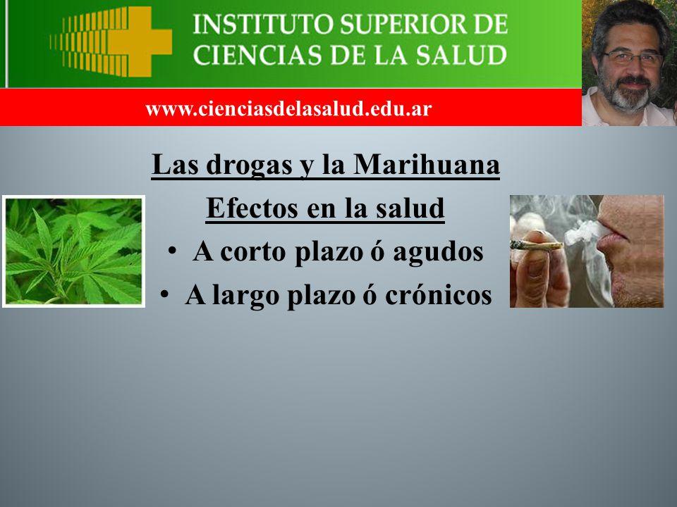 Las drogas y la Marihuana A largo plazo ó crónicos