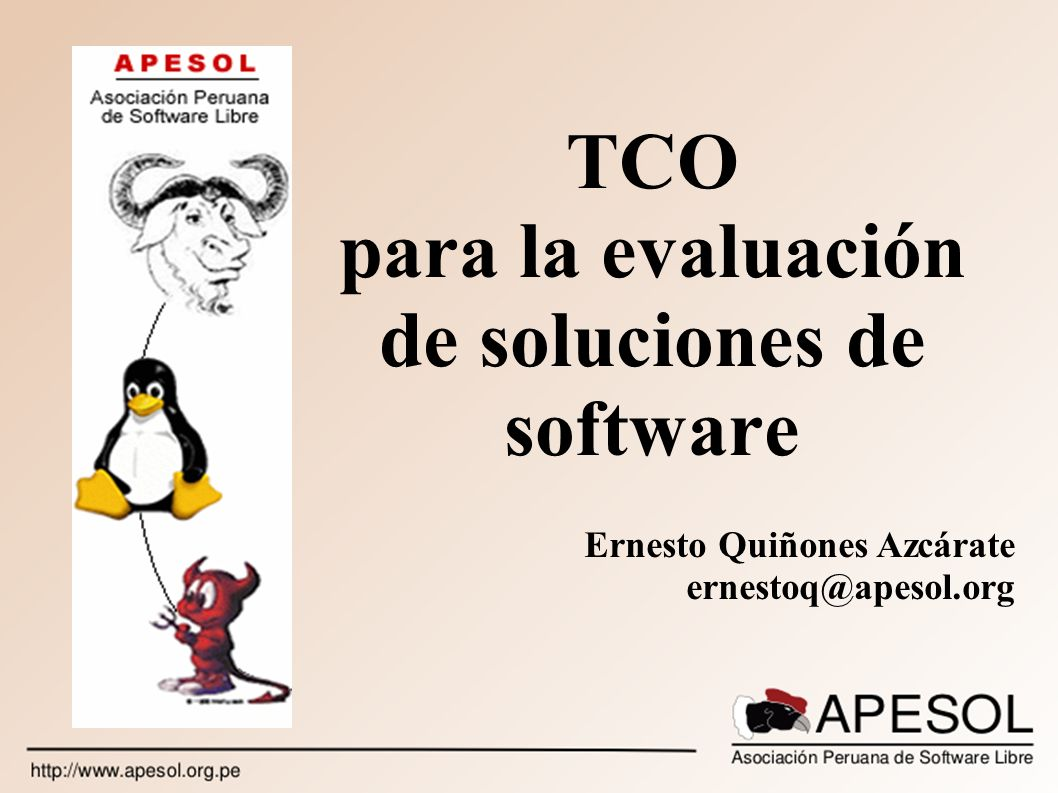 TCO para la evaluación de soluciones de software