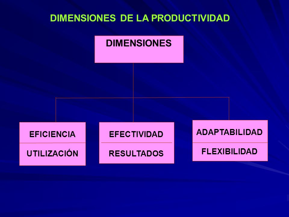DIMENSIONES DE LA PRODUCTIVIDAD