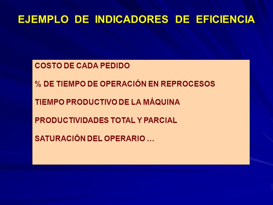 EJEMPLO DE INDICADORES DE EFICIENCIA