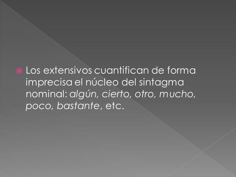 Los extensivos cuantifican de forma imprecisa el núcleo del sintagma nominal: algún, cierto, otro, mucho, poco, bastante, etc.