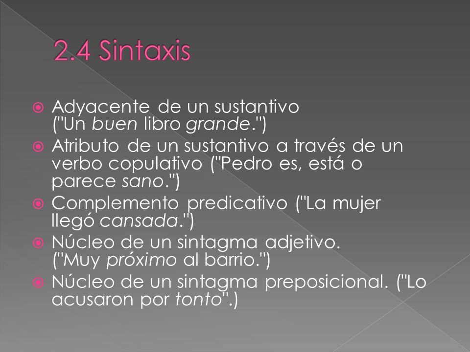 2.4 Sintaxis Adyacente de un sustantivo ( Un buen libro grande. )
