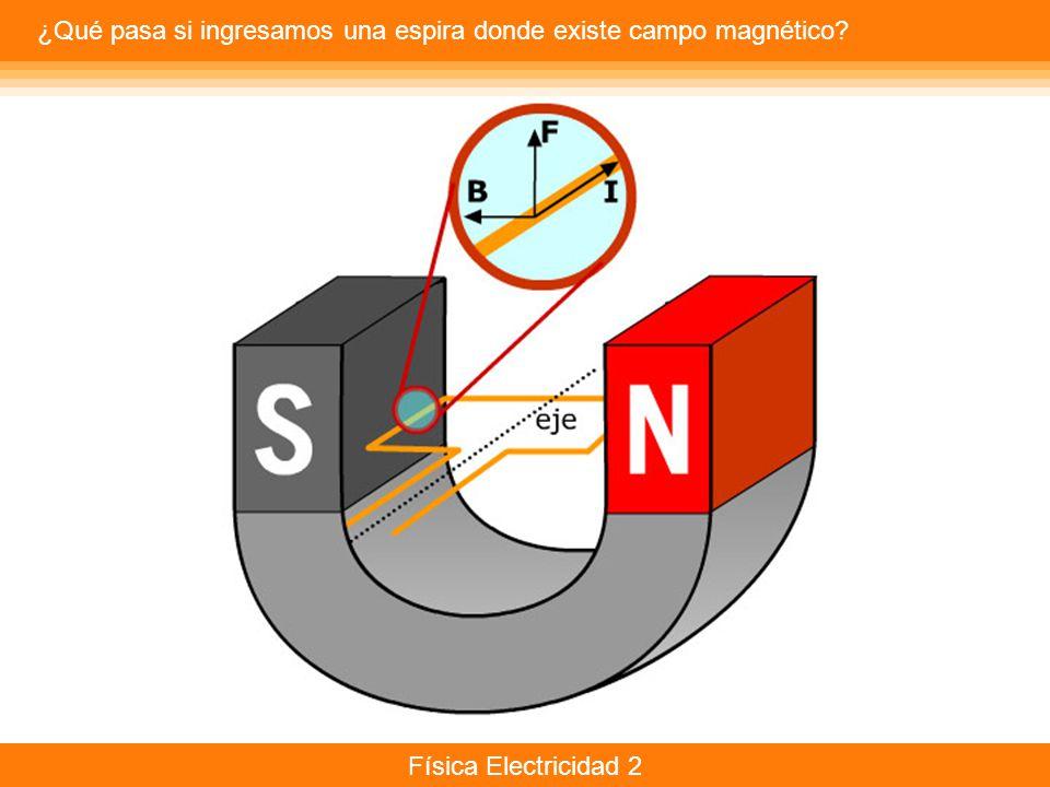 ¿Qué pasa si ingresamos una espira donde existe campo magnético