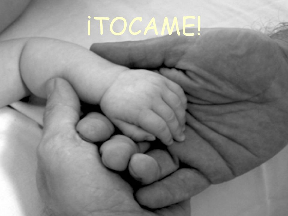 ¡TOCAME!
