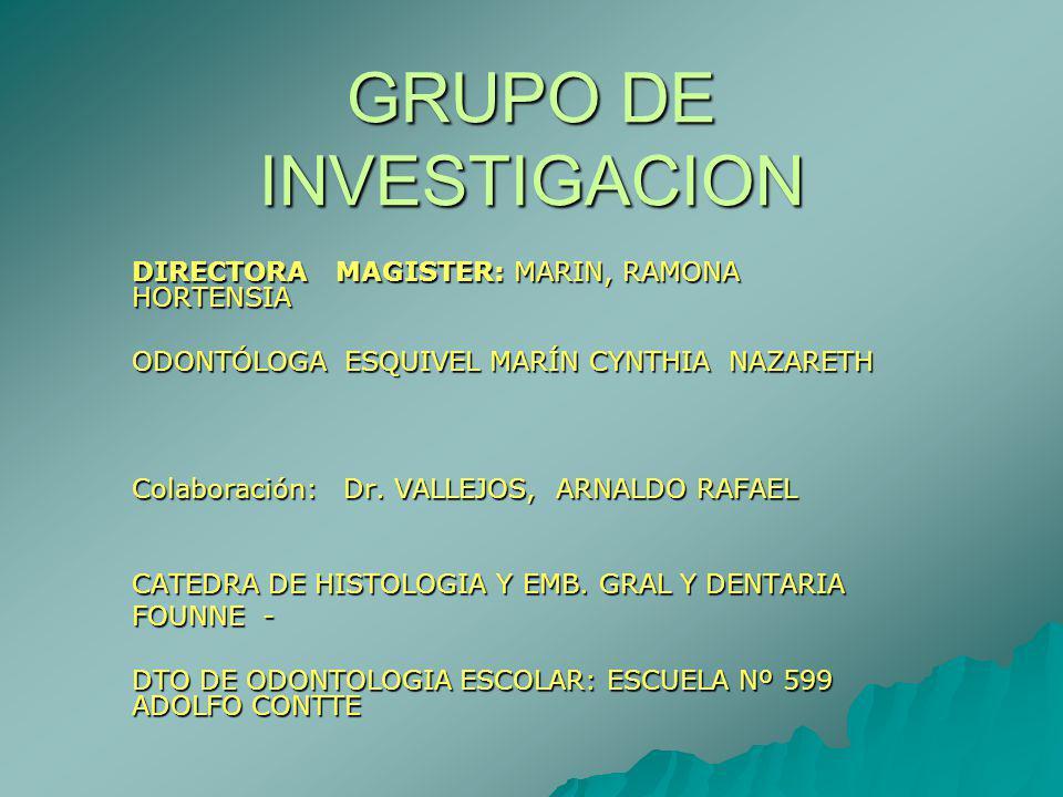 GRUPO DE INVESTIGACION