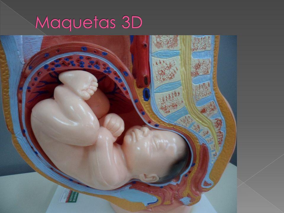 Maquetas 3D