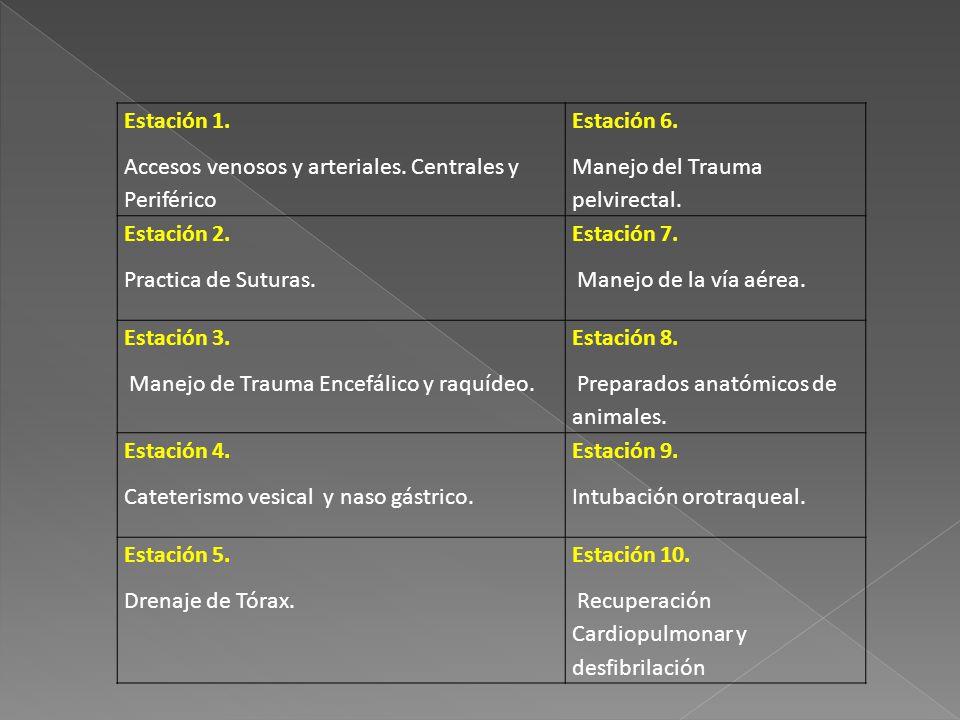 Estación 1. Accesos venosos y arteriales. Centrales y Periférico. Estación 6. Manejo del Trauma pelvirectal.
