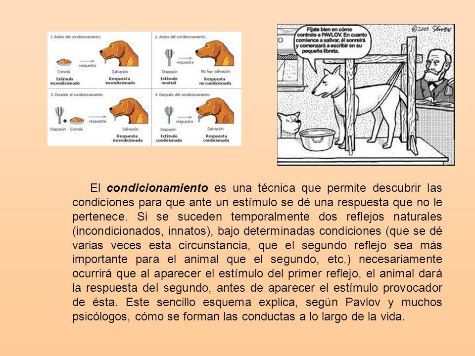 El condicionamiento es una técnica que permite descubrir las condiciones para que ante un estímulo se dé una respuesta que no le pertenece. Si se suceden temporalmente dos reflejos naturales (incondicionados, innatos), bajo determinadas condiciones (que se dé varias veces esta circunstancia, que el segundo reflejo sea más importante para el animal que el segundo, etc.) necesariamente ocurrirá que al aparecer el estímulo del primer reflejo, el animal dará la respuesta del segundo, antes de aparecer el estímulo provocador de ésta. Este sencillo esquema explica, según Pavlov y muchos psicólogos, cómo se forman las conductas a lo largo de la vida.