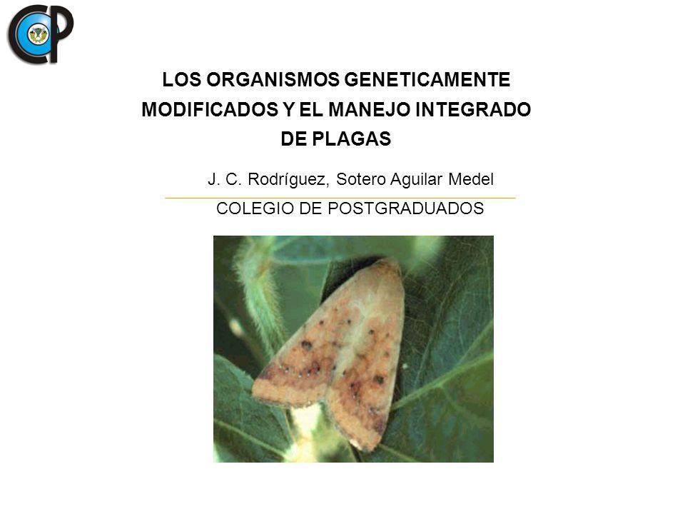 LOS ORGANISMOS GENETICAMENTE MODIFICADOS Y EL MANEJO INTEGRADO