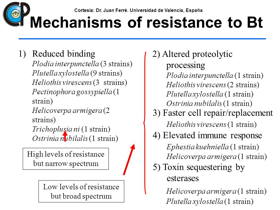 Mechanisms of resistance to Bt