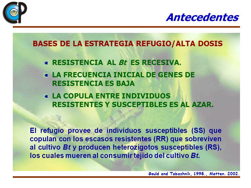 Antecedentes BASES DE LA ESTRATEGIA REFUGIO/ALTA DOSIS