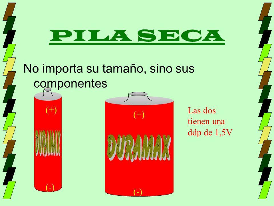 PILA SECA No importa su tamaño, sino sus componentes (+) Las dos (+)