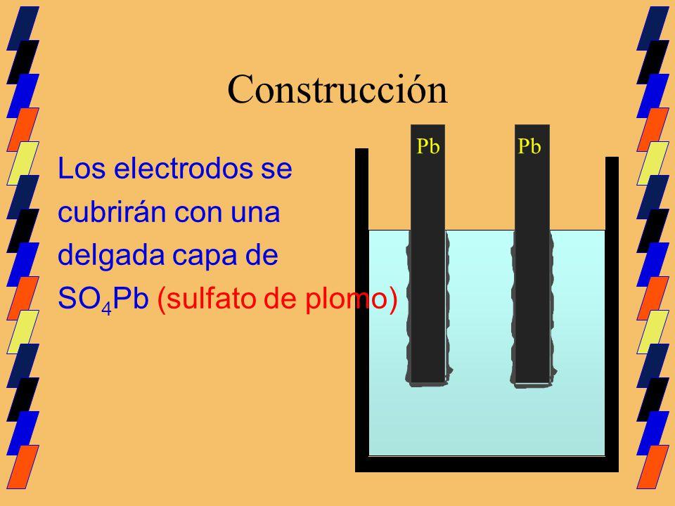 Construcción Los electrodos se cubrirán con una delgada capa de