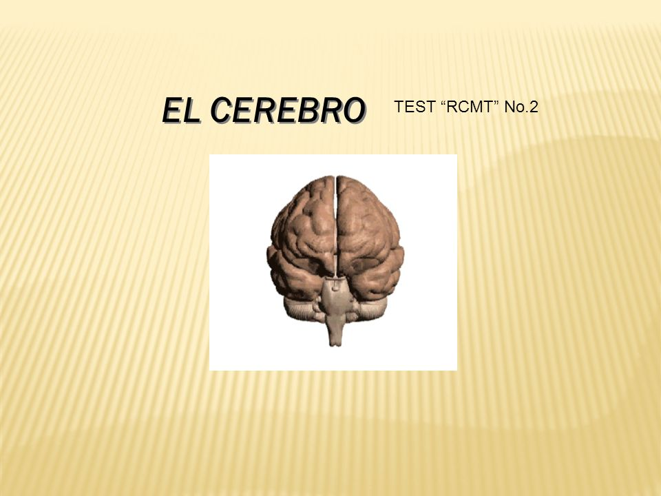 EL CEREBRO TEST RCMT No.2