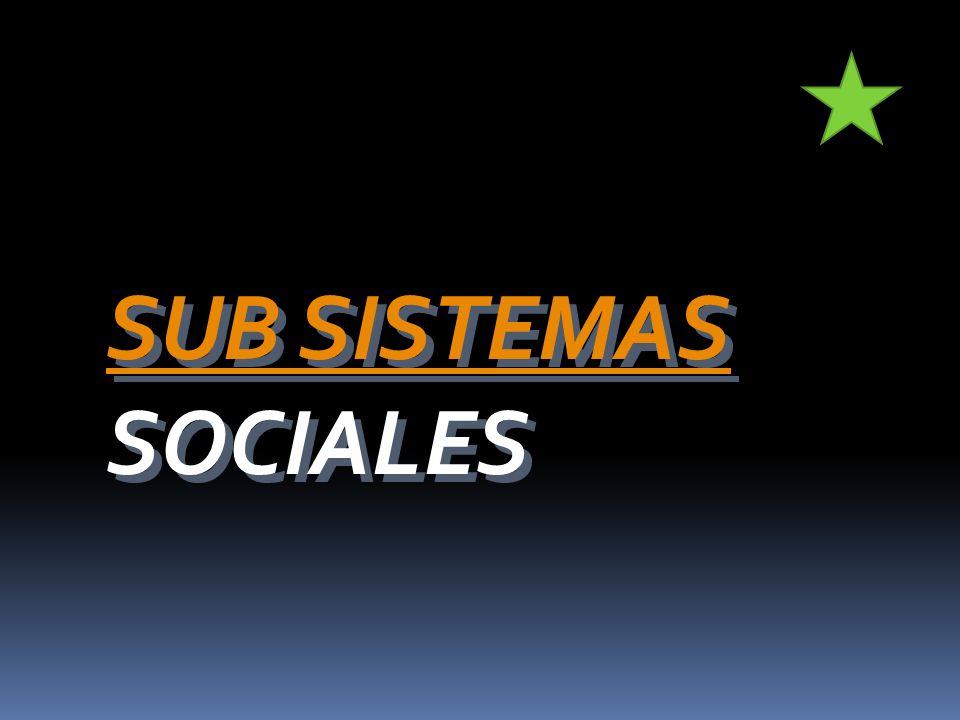 SUB SISTEMAS SOCIALES